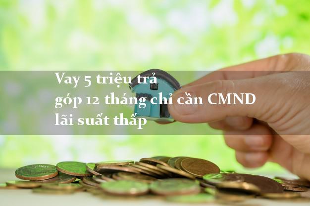 Vay 5 triệu trả góp 12 tháng chỉ cần CMND lãi suất thấp